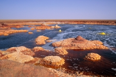 d-ert_dallol_pool3_1